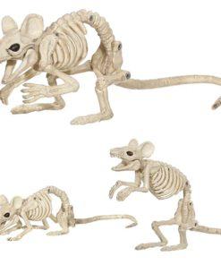 Esqueleto de Cachorro de Duas Cabeças Animado, Cachorro Esqueleto, Esqueleto de Cachorro de Duas Cabeças Animado, Esqueleto de Duas Cabeças