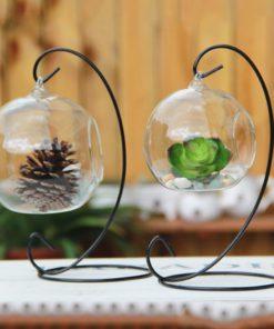 Teardrop Glass Terrarium,Teardrop Glass,Glass Terrarium