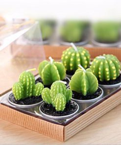 Cactus Candles,Mini Cactus Candles,Mini Cactus