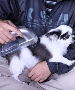Hair Vacuum,Pet Hair,Portable Pet,Portable Pet Hair Vacuum